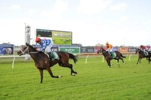 Youngstar enters Queensland Oaks picture