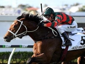 Atkins gives Waller another G1 quinella