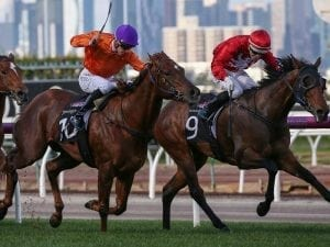 Remember The Name leads in stable quinella