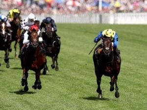 Poet's Word gives Stoute Ascot record
