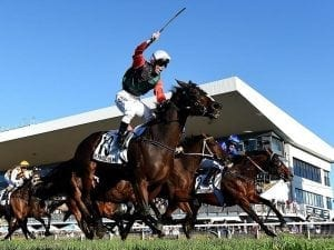 Damion Flower to run English in Everest