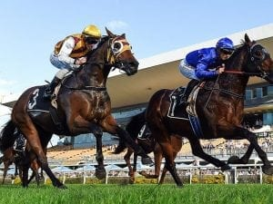 Mark Du Plessis to ride Most Important