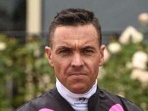 Ryan Maloney to start fresh in Queensland
