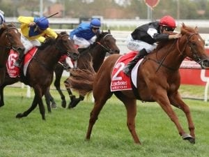 Coolmore Stud Stakes aim for Written By