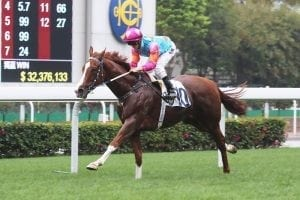 Purton looks for a Handsome return at Sha Tin