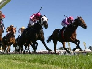 I Feel Good returns to win Stayers Final