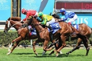 Mishani to atone for unlucky defeat