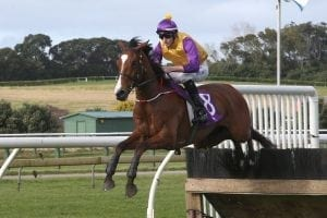 Monarch set to Chime back home