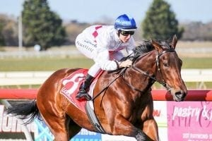 Propelle out to boost rating at Flemington