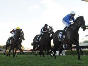 I Thought So ends run of outs at Randwick