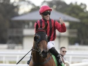 Sweet Victory goes up in class at Rosehill