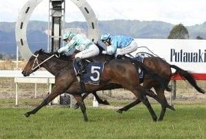 Marsh trio on target for Rotorua