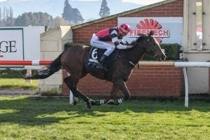 Trainer surprised by lack of rider options
