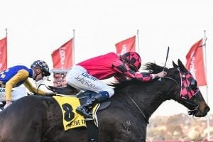 First try at Valley lands SA pair a win