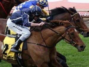 Widgee Turf wins again at Moonee Valley