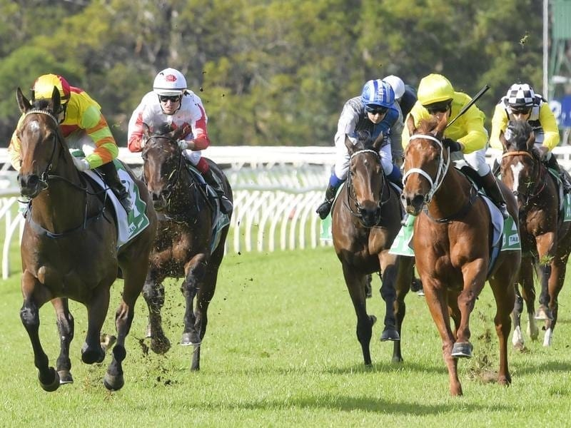 Brenton Avdulla rides Sparkly Star to win race 4 at Warwick Farm