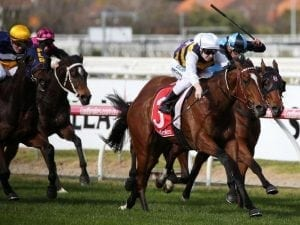 Mantastic gets first win in Australia