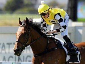 Murphy rides first Saturday city winner