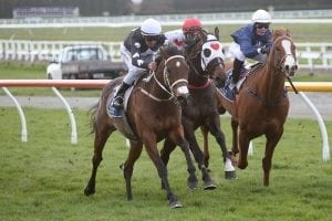 Southern mare in mix for Tarzino star