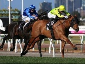 Mr Money Bags chases third Flemington win
