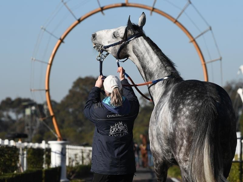 Chautauqua refuses to jump again | Horse Betting