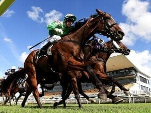 First Crush set for Grafton Cup