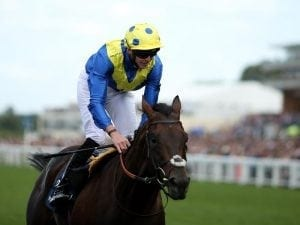 Poet's Word wins King George for Stoute