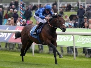 Harry Angel recovering from Ascot injury