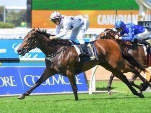 Sunlight shines in Adelaide trial return