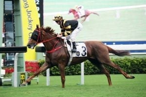 Purton pins hopes on Time Warp's kid brother