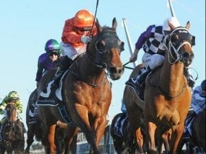 Dreamforce claims Listed Winter Stakes win