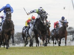 Waller ends season with four at Rosehill