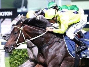 Listed swan song for Danish Twist