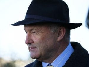 Gold Mag faces first city test at Sandown