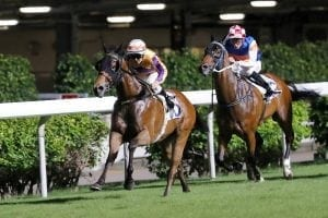 Purton's Happy after powerful night at the Valley