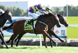 Home track hit-out for star performer