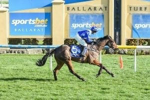 Blood And Sand jumps to Houlahan success