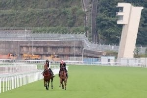 Dawn of a new day at Conghua Racecourse