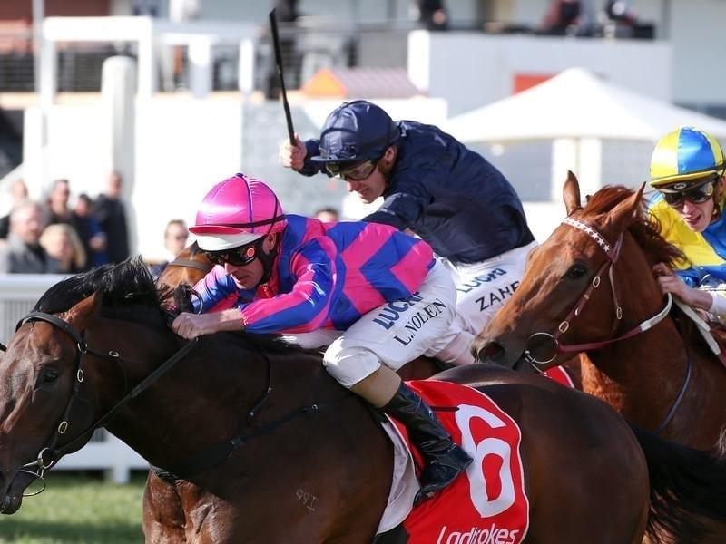 Tony Nicconi wins the Vain Stakes.
