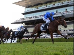 Alizee out for the spring after bleeding
