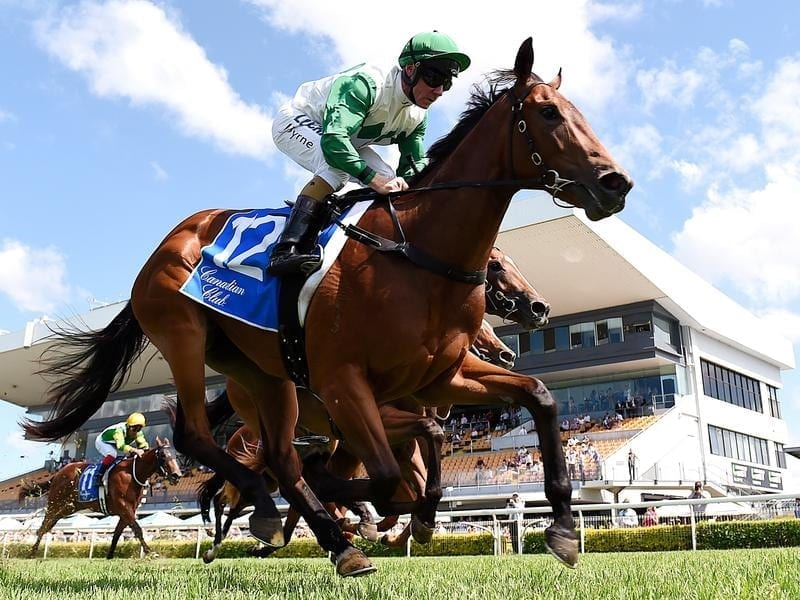 Melbourne cup betting specials at outback descargar mod loader 1-3 2-4 betting system