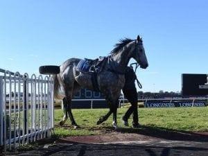 Racing future of Chautauqua in jeopardy