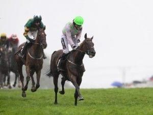 Sharjah wins Galway Hurdle for Mullins