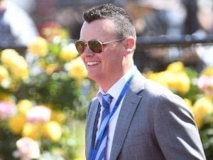 Ball Of Muscle to sprint at Caulfield