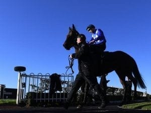 Prince in the big league in Winx Stakes