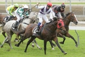 Hennessy hoping history repeats