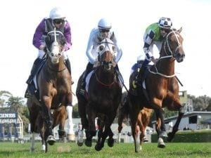 Red Alto comes out on top at Randwick