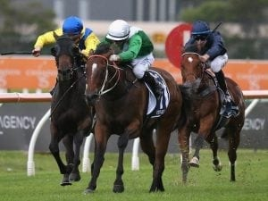 Blinkers back on Oohood for Furious Stakes