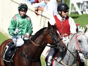 Munce gives First Crush Newcastle Cup test