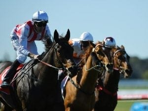 Our Libretto keeps Sandown record intact